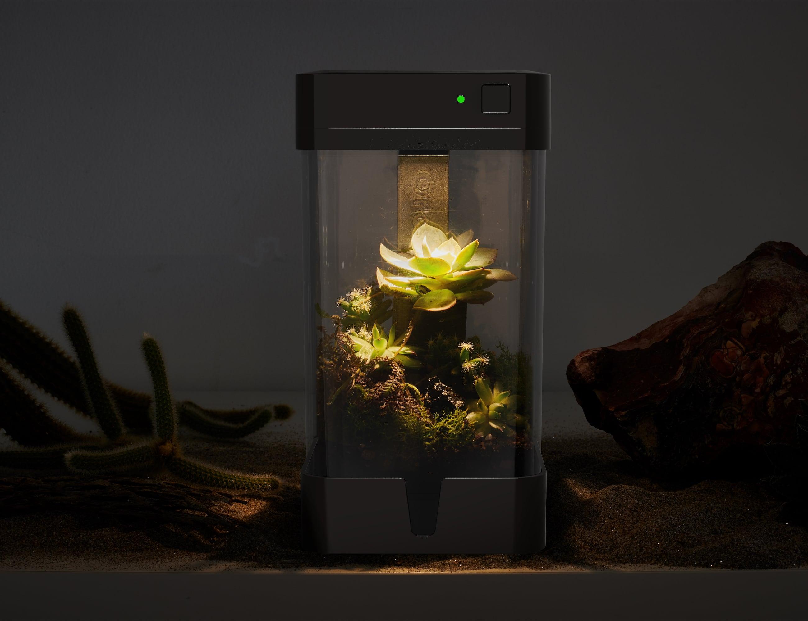 OrchidBox Smart Mini Terrarium