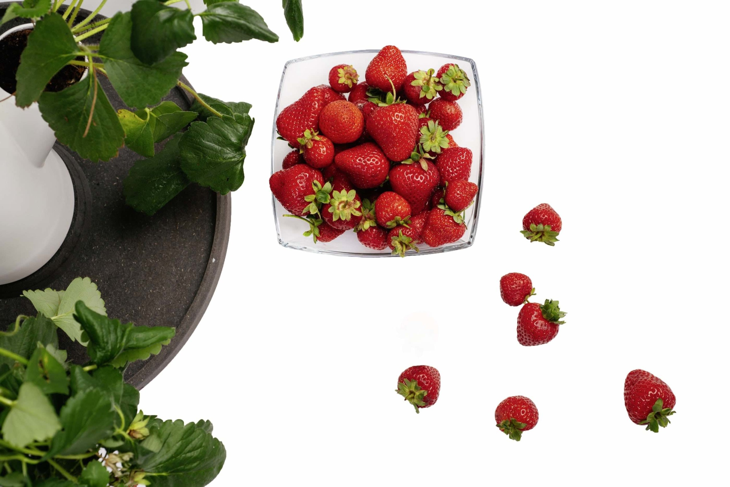 Sissi Modular Strawberry Tree Planter