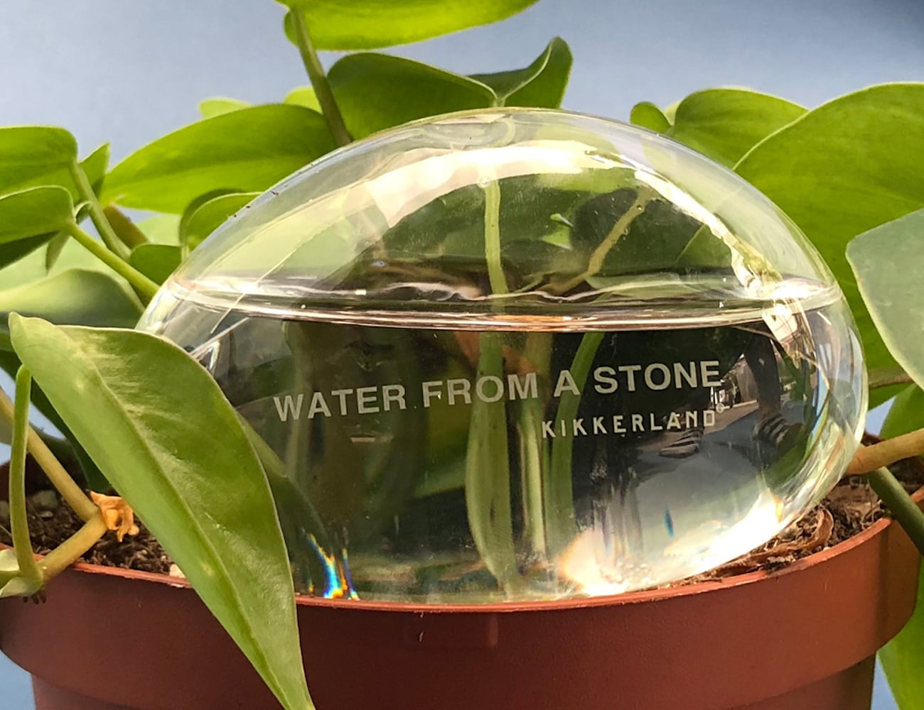 Water From a Stone Plant Watering System