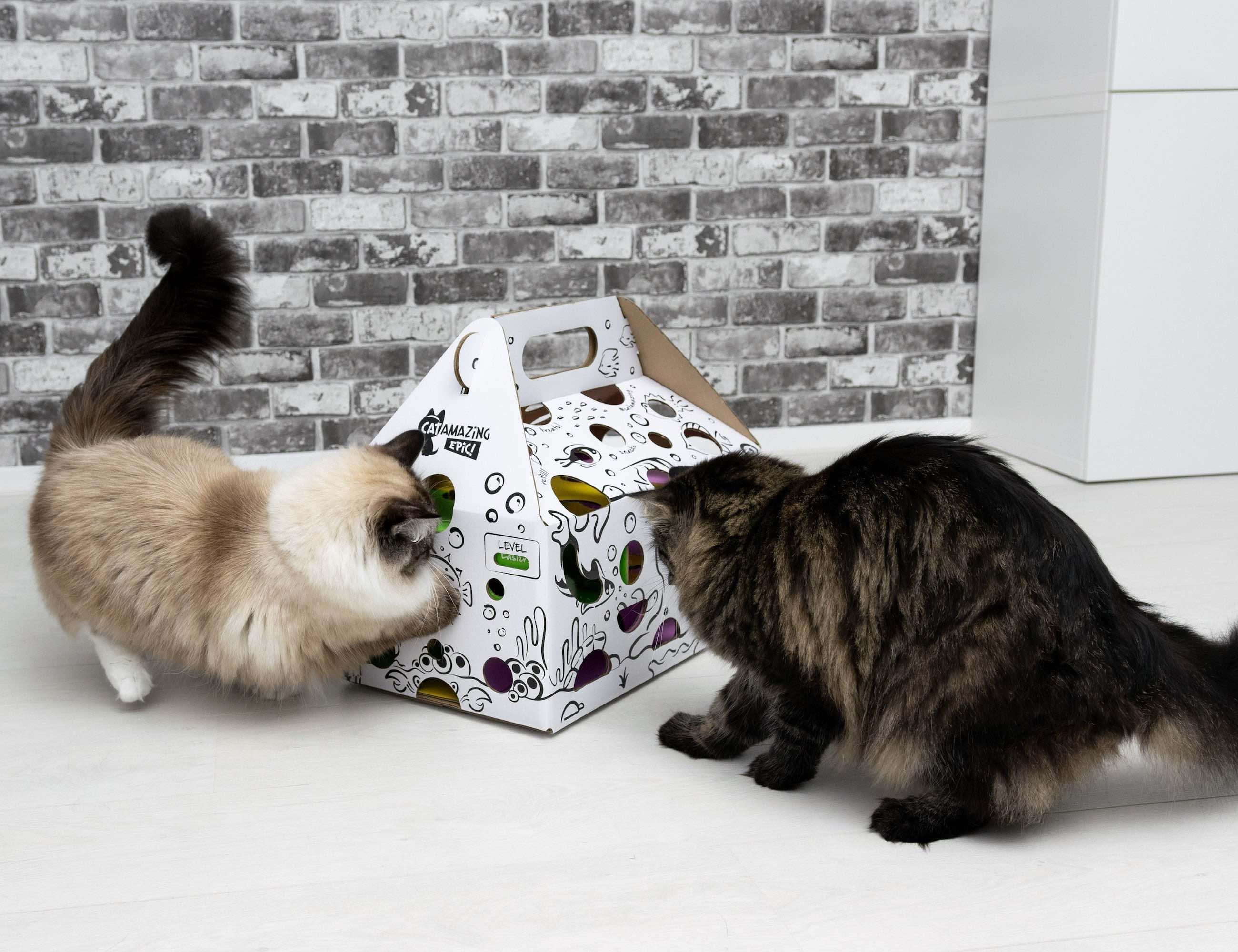 Cat Amazing EPIC! Cat Toy Puzzle Feeder