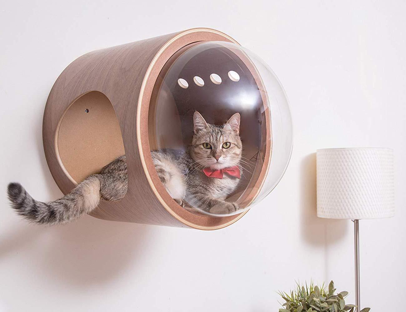 MYZOO Spaceship Gamma Clear Cat Perch