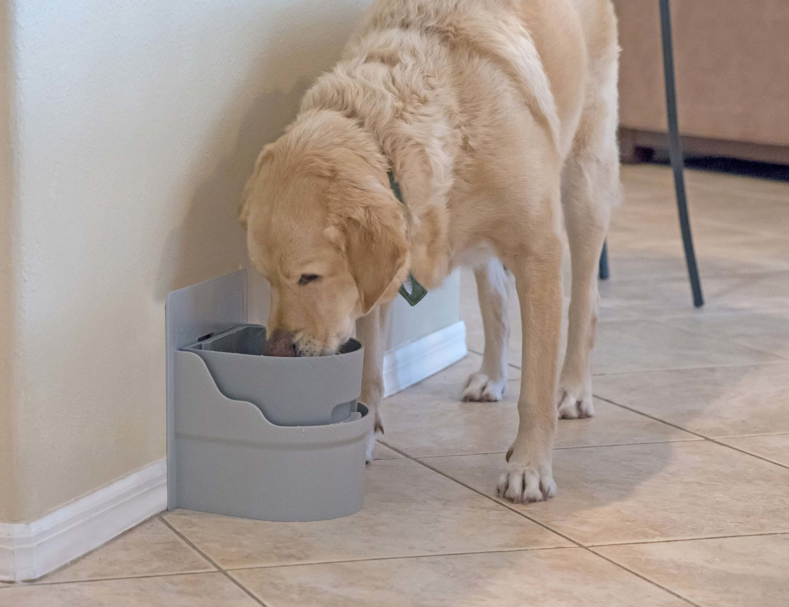 Perpetual Well Pet Watering System