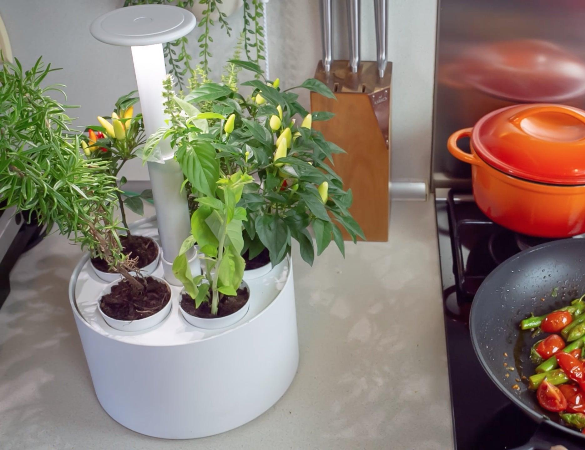 Plantone Smart Mini Indoor Garden