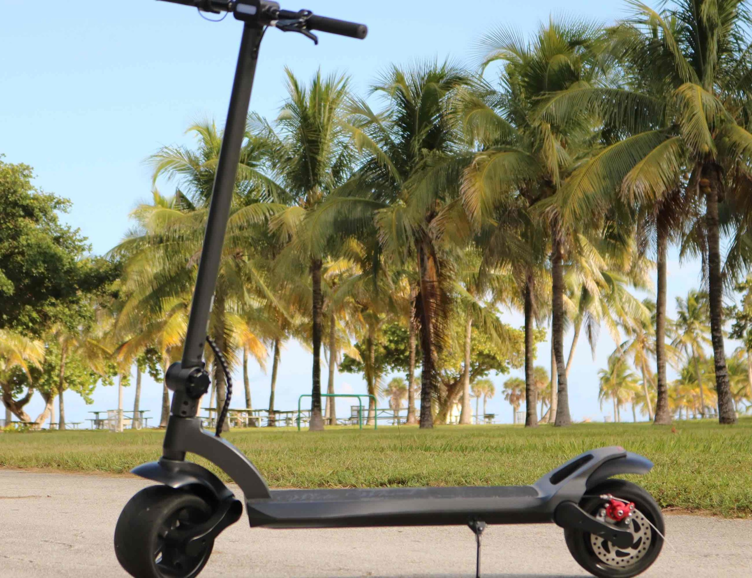 WideWheel Comfortable Wide E-Scooter