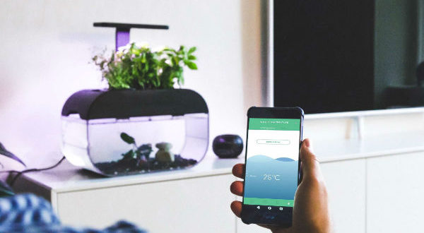 6 Smart mini-ecosystems for your home