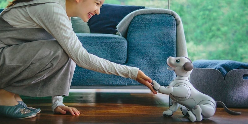 Sony aibo Intelligent Dog Robot Pet - 16 Products the whole family will enjoy