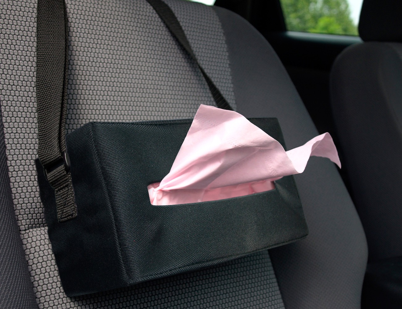 Automotive Tissue Valet
