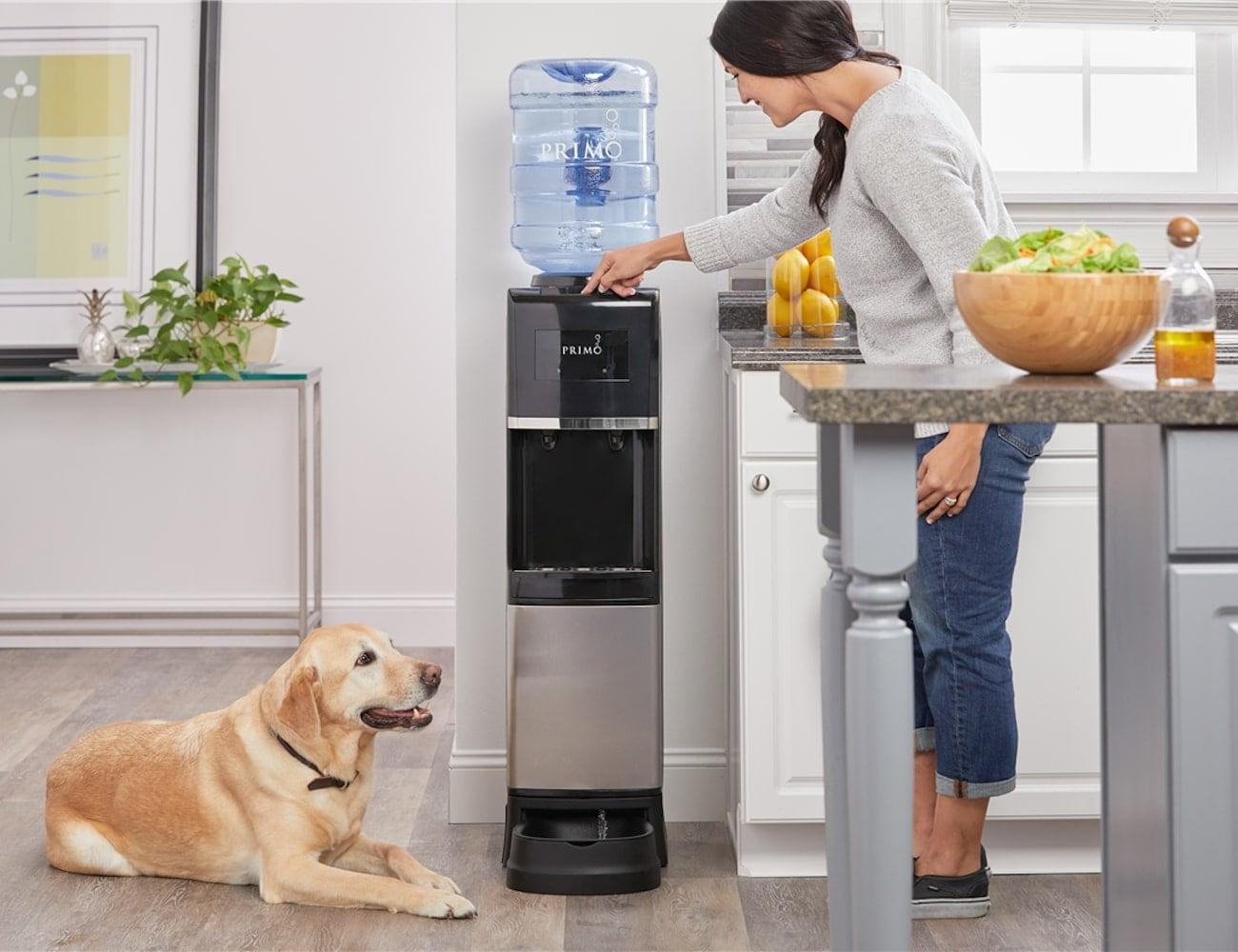 Primo Pet Station Water Dispenser