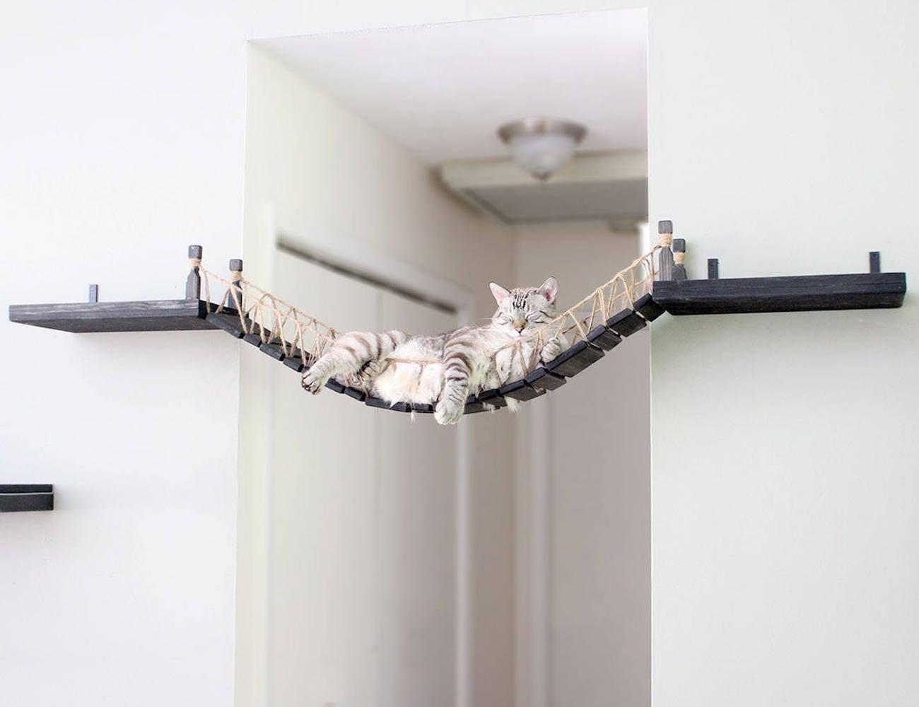 CatastrophiCreations Roped Cat Bridge