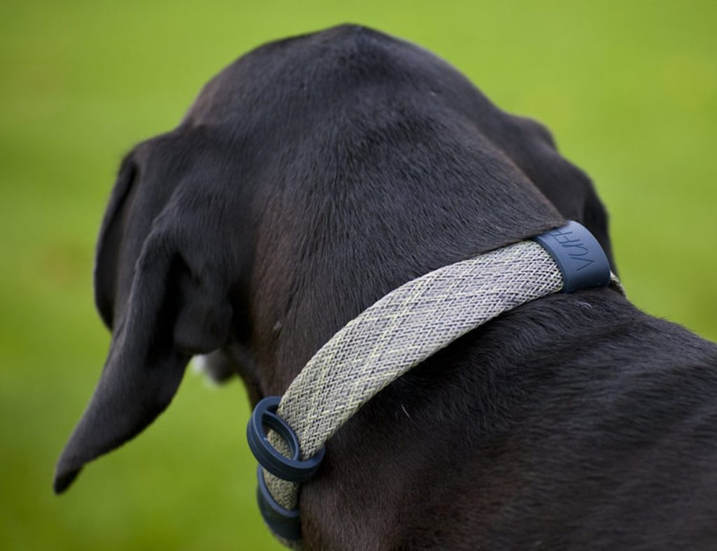 Vuff+CollarLess+Fixed+Loop+Dog+Collar