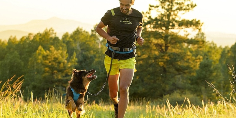 Ruffwear Trail Runner System - Holiday gift guide – Gift ideas under $100