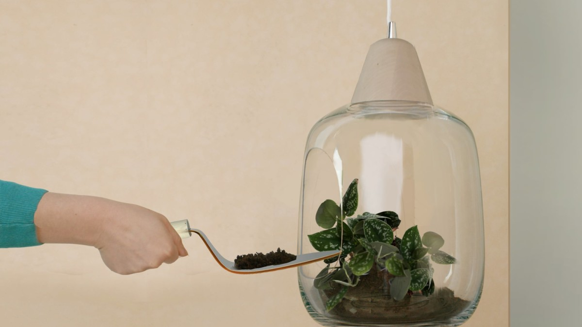 Milo Baby Plant Glass Lampshade lets you appreciate nature indoors
