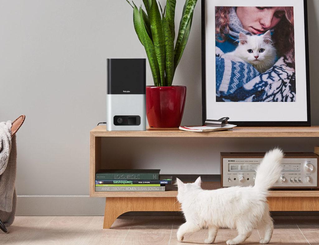 Petcube Bites smart pet camera