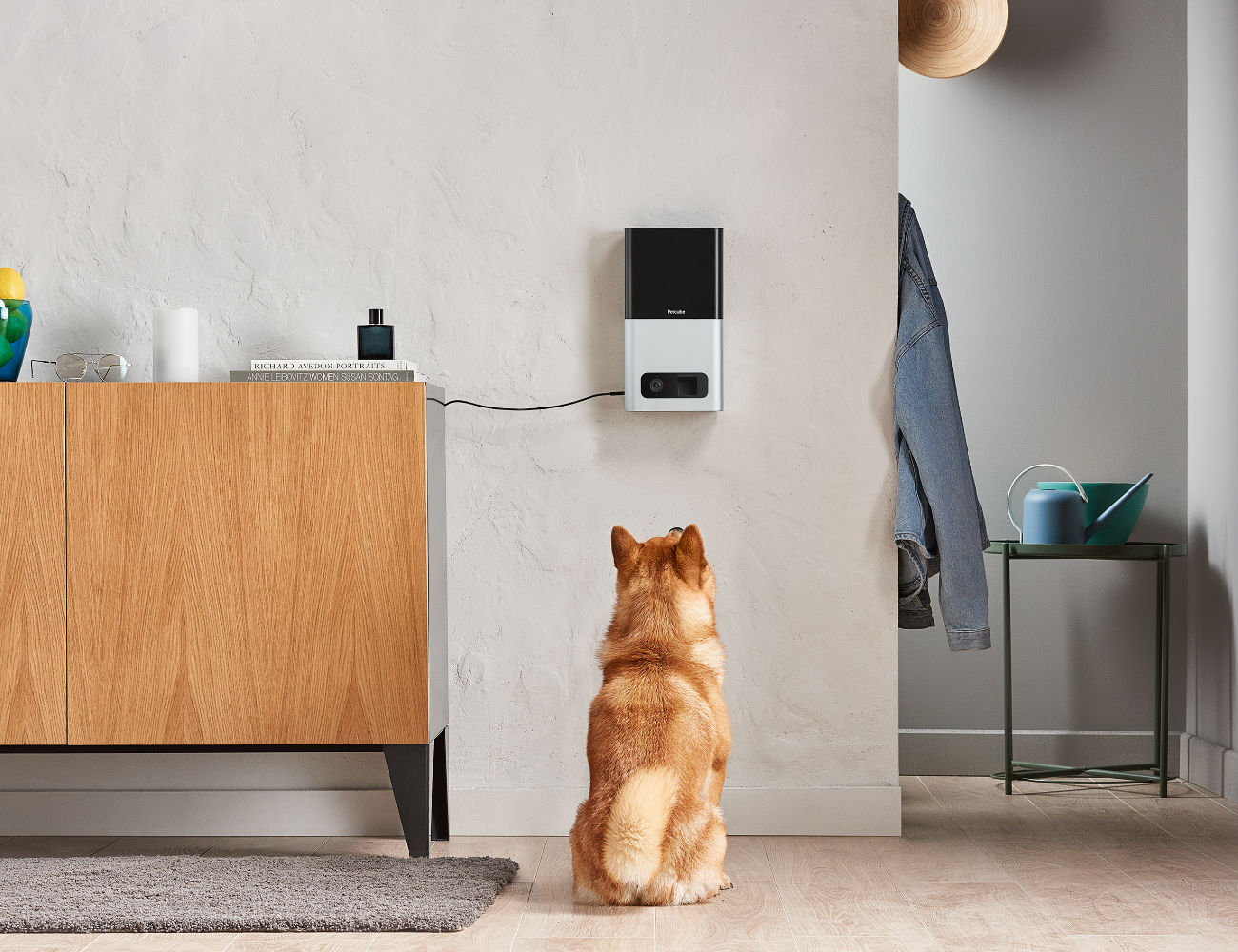 Petcube Bites Treat Flinging Pet Camera