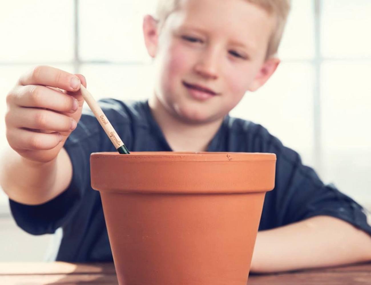 Sprout Pencil Plantable Graphite Pencils