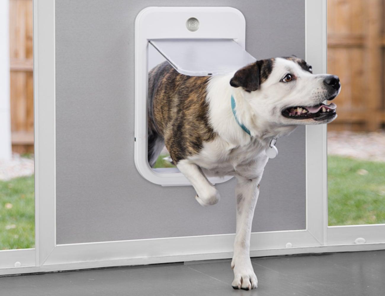 Wagz Go Smart Automatic Dog Door