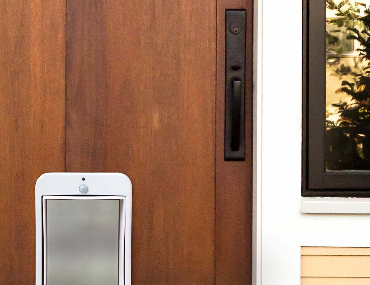 Wagz Go Smart Automatic Dog Door » Gadget Flow
