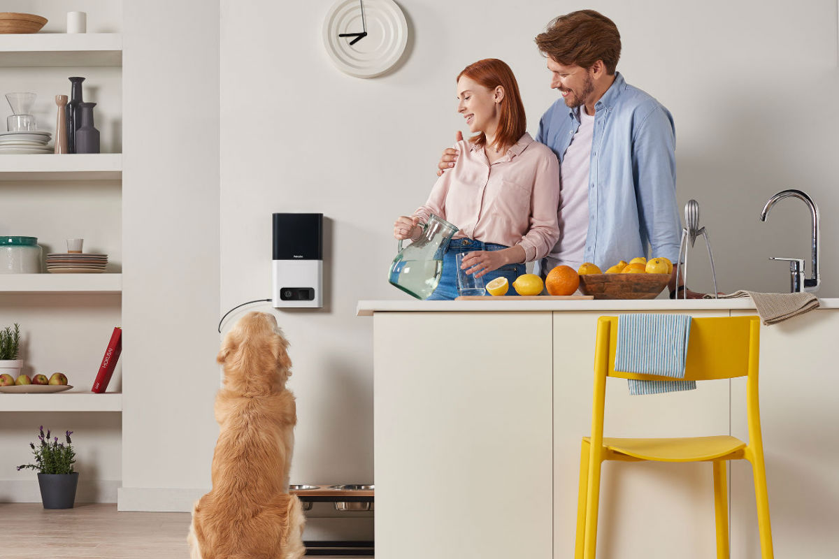 8+Alexa-enabled+gadgets+we+can%E2%80%99t+wait+to+use+from+CES+2019