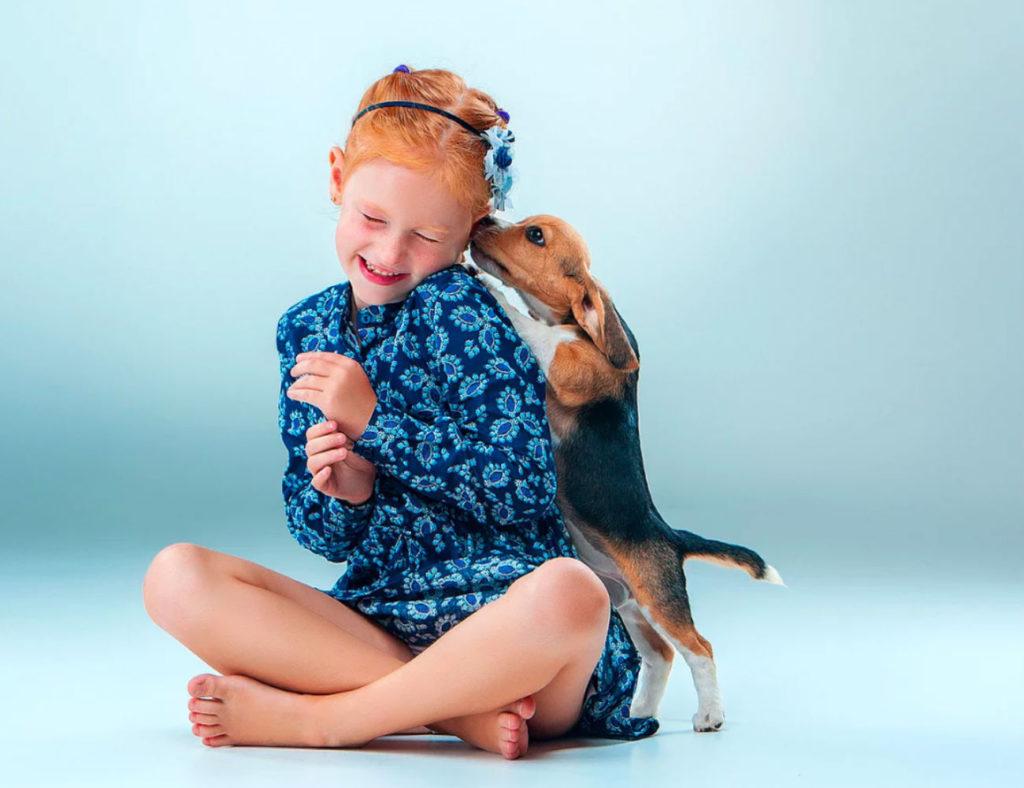 INUBOX+Smart+Dog+Toilet