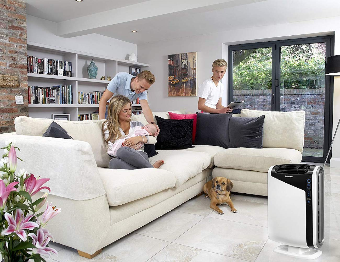 AeraMax 300 Large Room Air Purifier