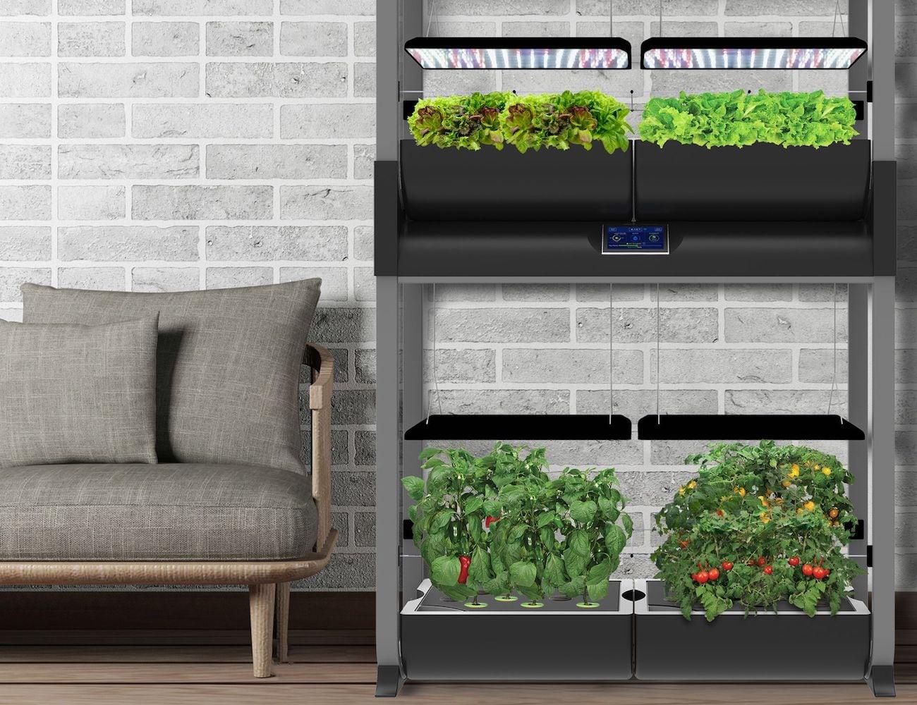 AeroGarden Farm Plus Smart Hydroponic Garden lets you grow all year long