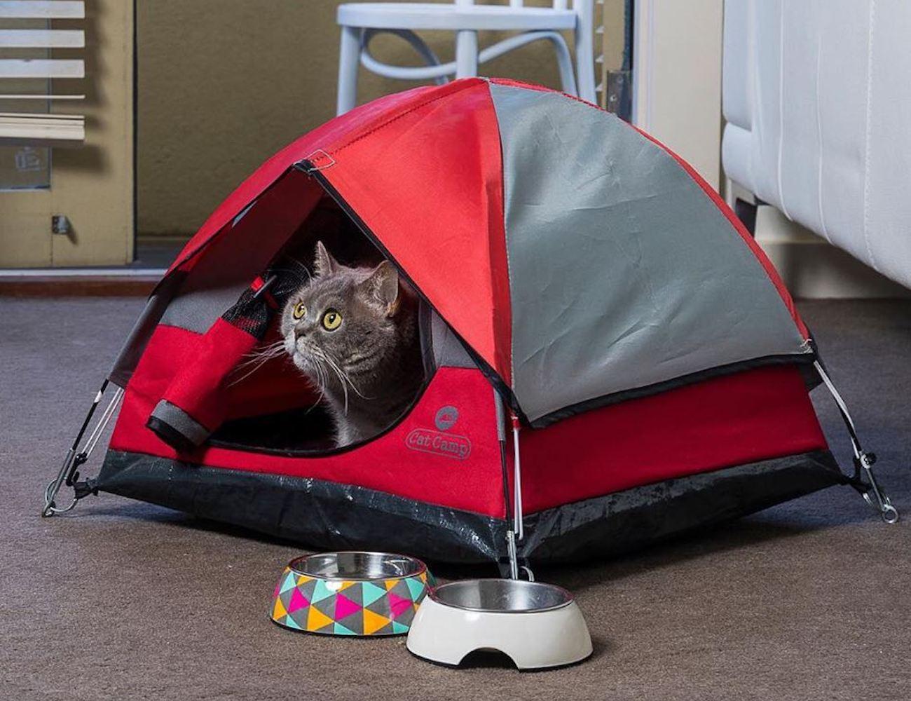 Cat Camp Mini Indoor Cat Tent