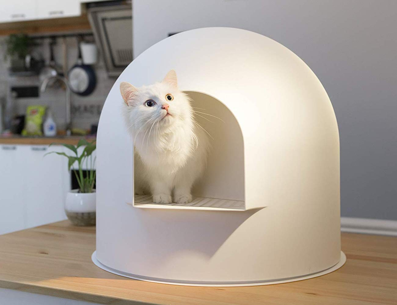 Pidan Snow House Igloo Cat Litter Box
