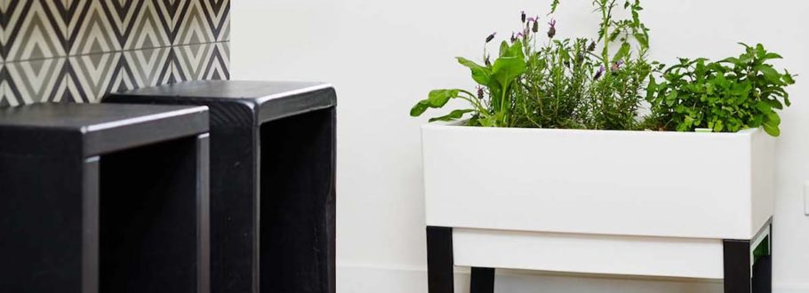 8 Smart gardens to help you live a greener life indoors