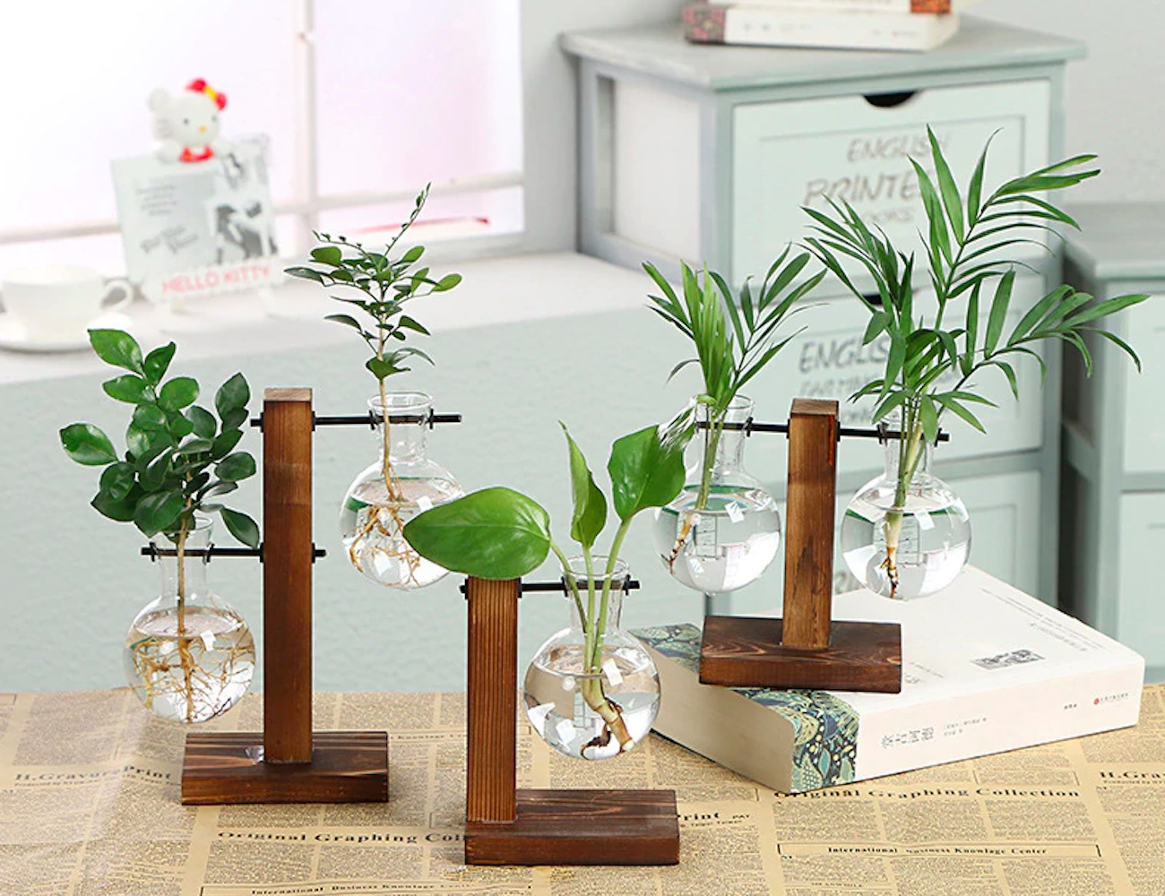 Balancing Glass Hydroponic Plant Vases give a transparent view of growing plants