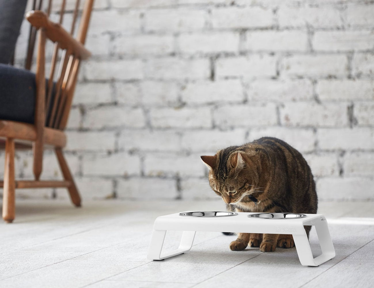 Desco Aluminum Cat Feeder by MiaCara lets your feline eat in style