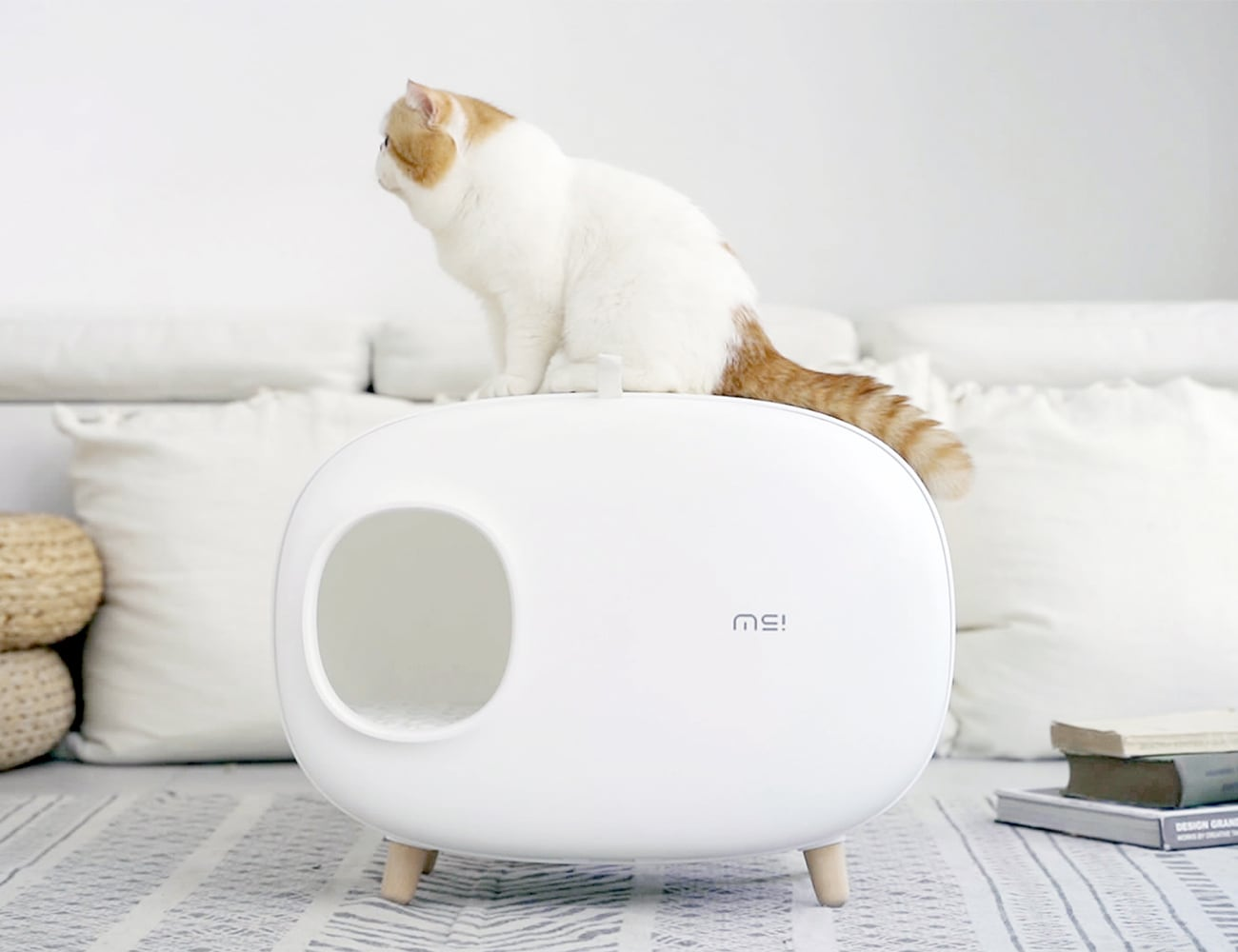 Makesure Modern Easy Cat Litter Box makes light of litter duties