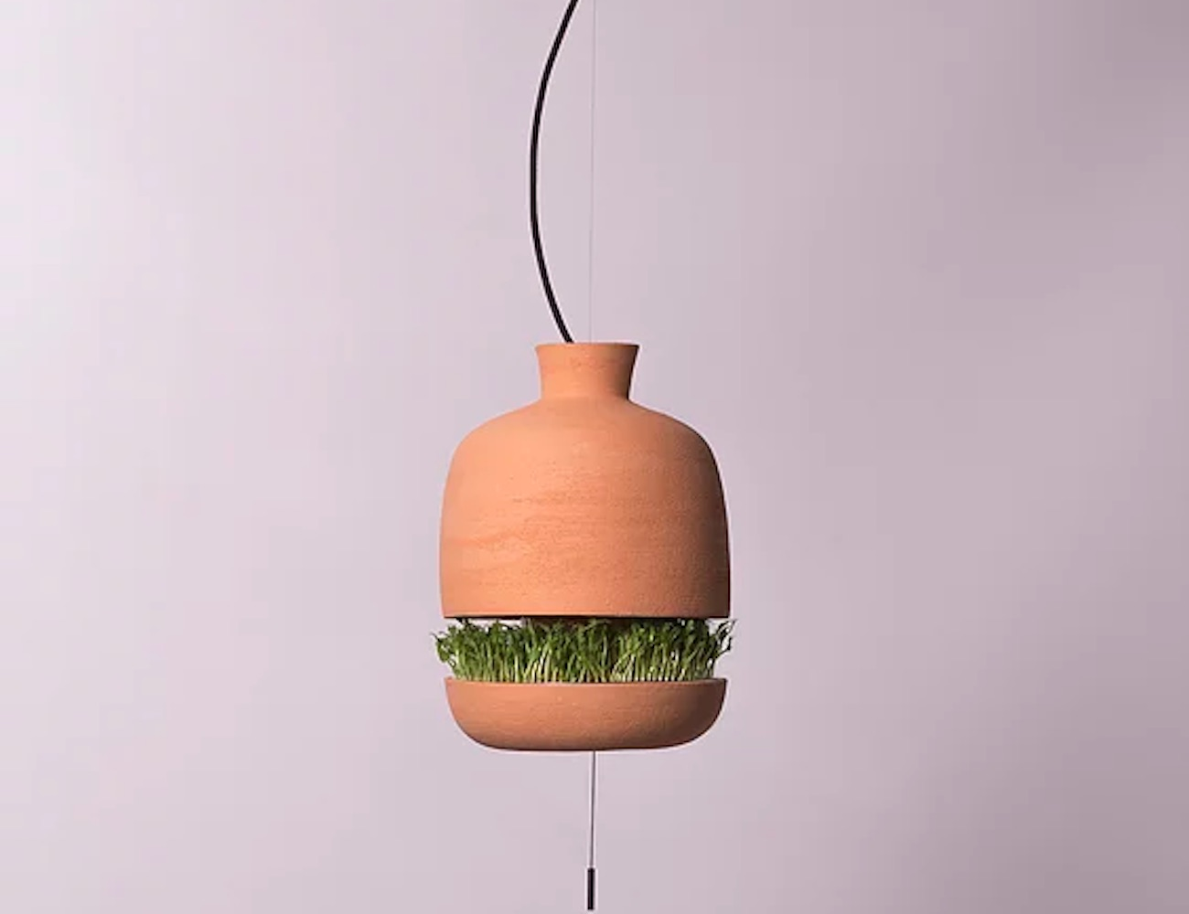 Brot Lamp Germinator Duo grows edible sprouts from a light