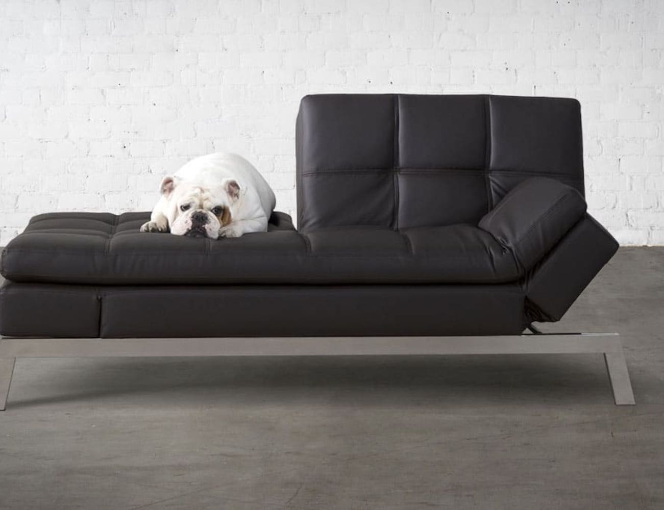 Coddle Couch Convertible Bed has everything you need to relax