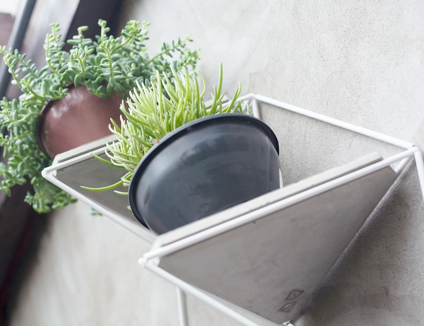 Estudio Parrado Garden Modules are the modern way to hang houseplants