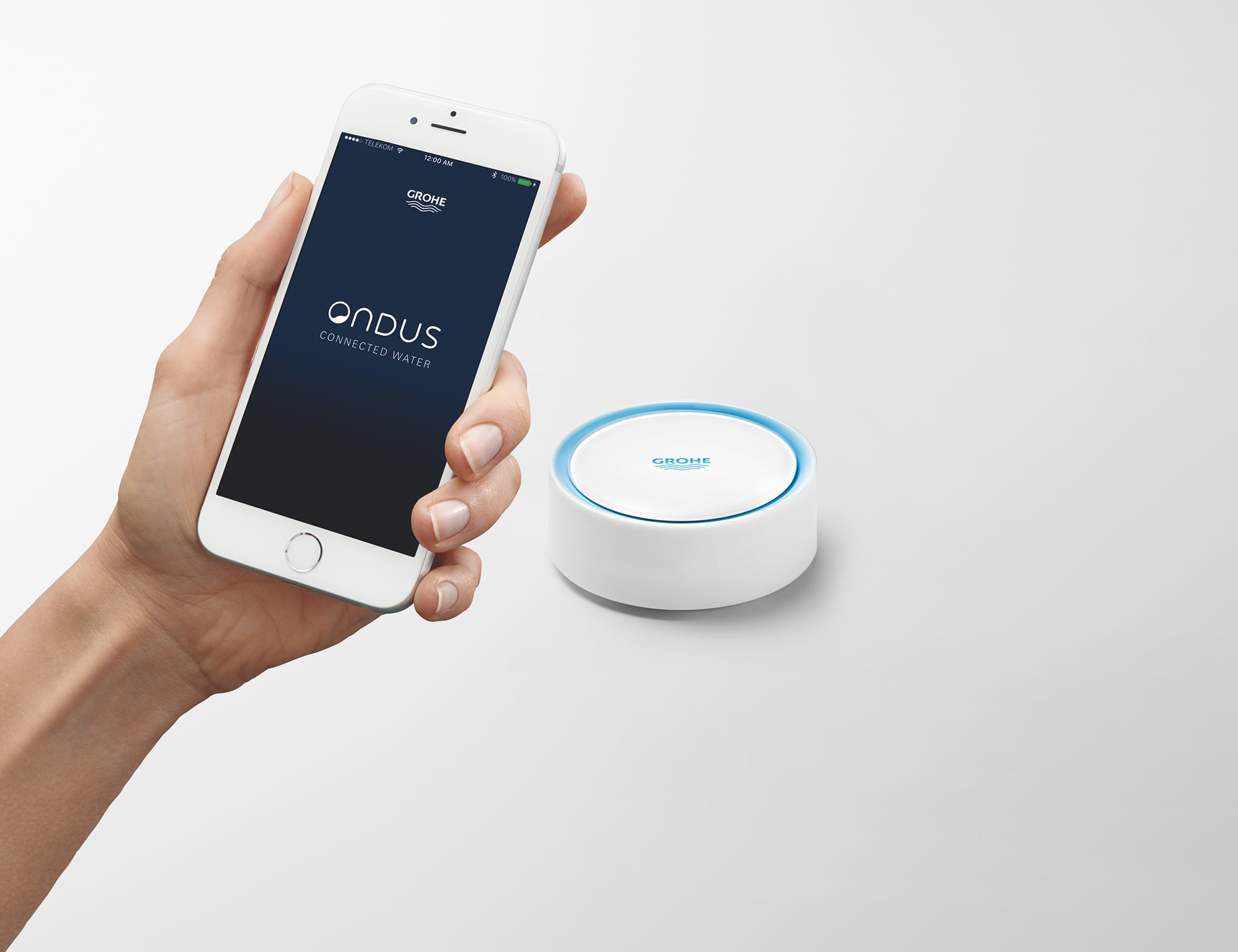 GROHE Sense Smart Water Sensor detects leaks when you're away from home.