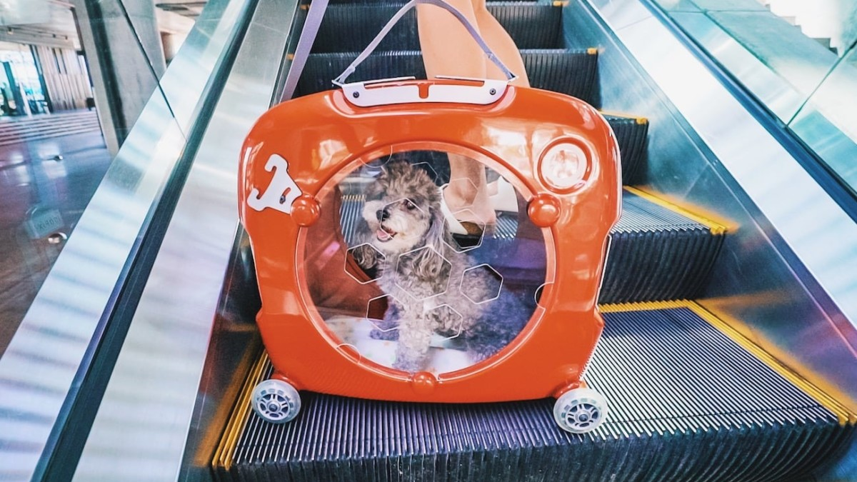 PupMee IoT Smart Pet Carrier offers a safer way for pet travel