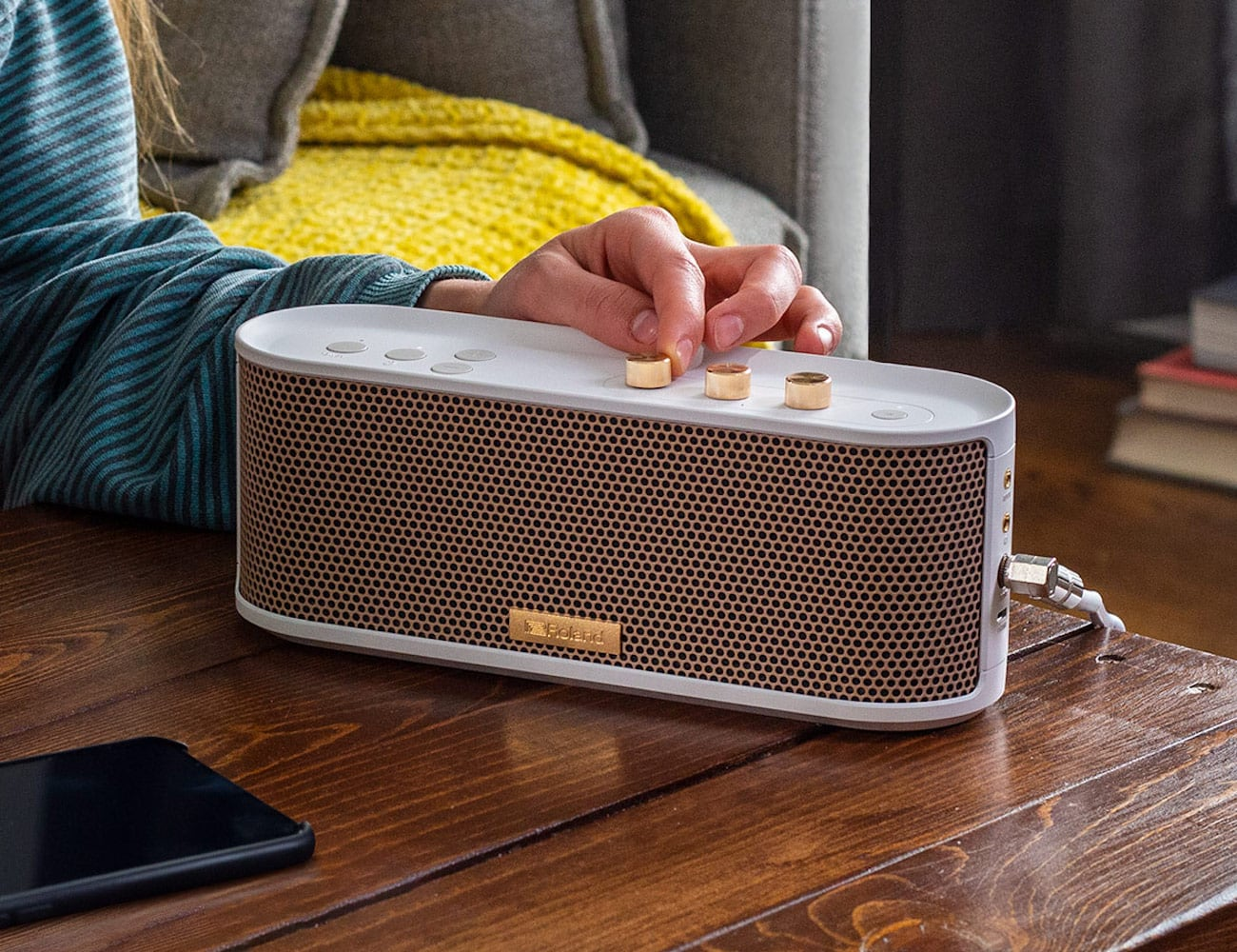 Roland BTM-1 Bluetooth Speaker with Instrument Input lets you play along to your songs
