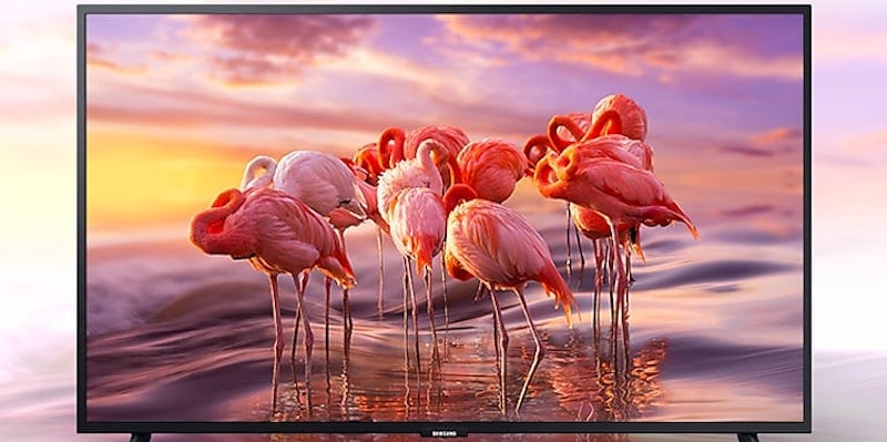A TV with pink flamingos on the screen.