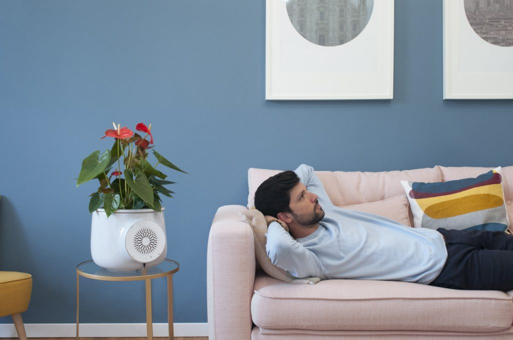 Clairy – The Most Amazing Natural Air Purifier