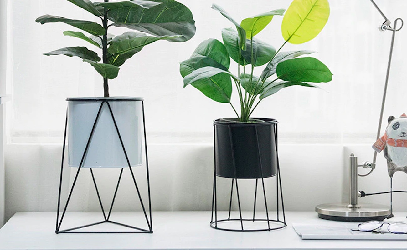 Minimalist Elevated Flower Pot Stand adds simplicity to home plants