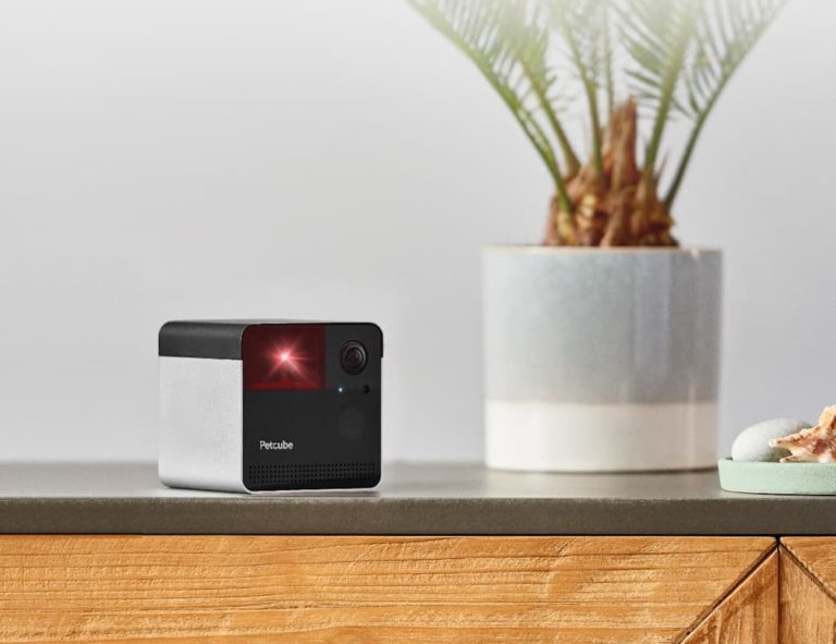 Petcube+Play+2+Interactive+Laser+Pet+Camera+lets+you+play+with+your+furry+friend+from+anywhere