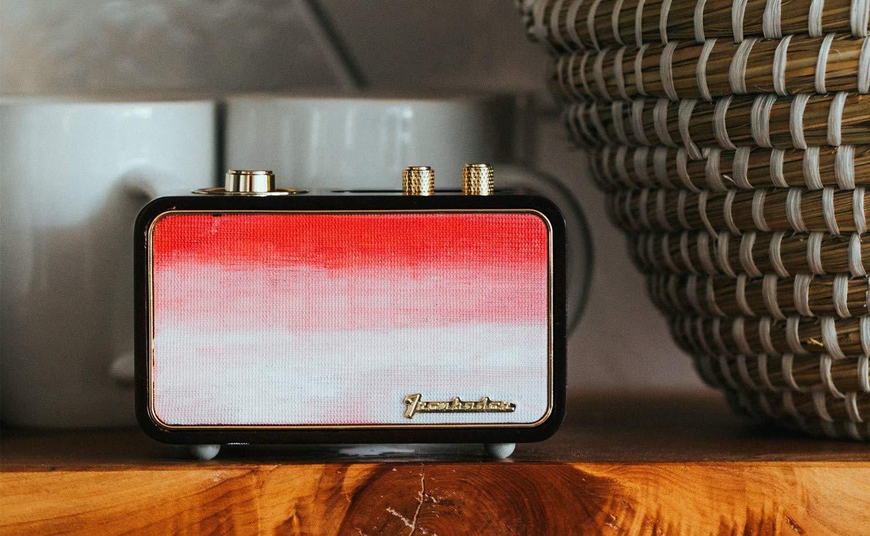 Trenbader Artlink Paintable Wireless Speaker is completely customizable