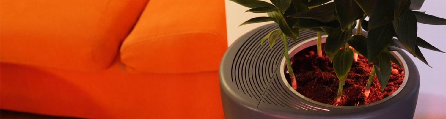 Love plants? Urbie Air is the air purifier for you