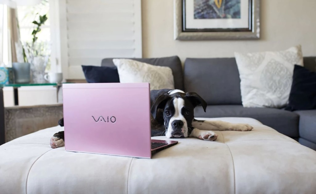 The best work laptops you can buy in 2019 - VAIO SX12 01