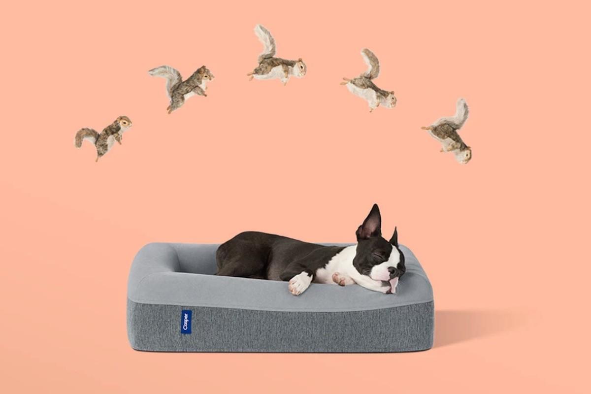 Casper Dog Bed Memory Foam Pet Mattress has a long-lasting design for your pup's comfort