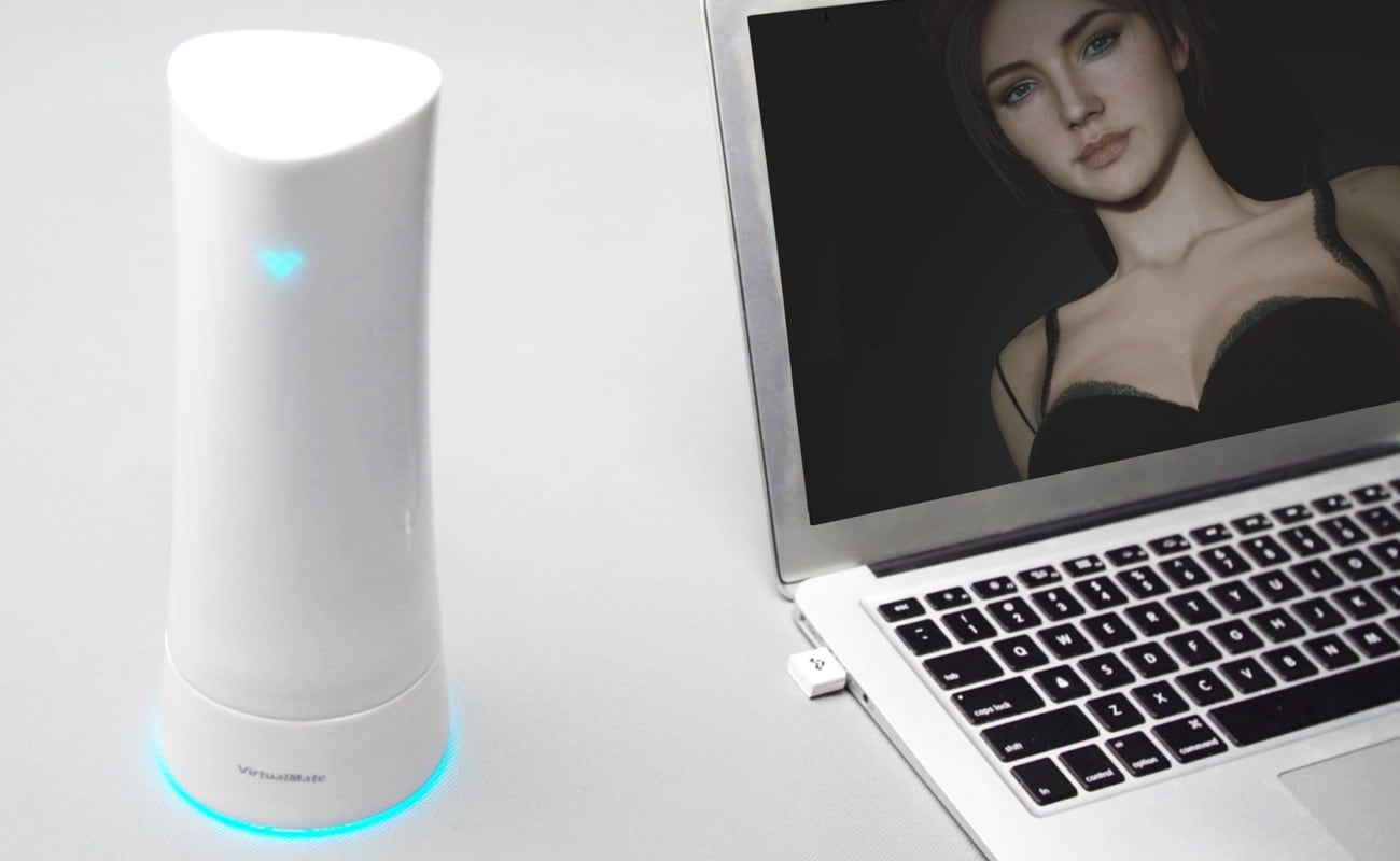 Virtual Mate Virtual Intimacy System is a realistic virtual partner game