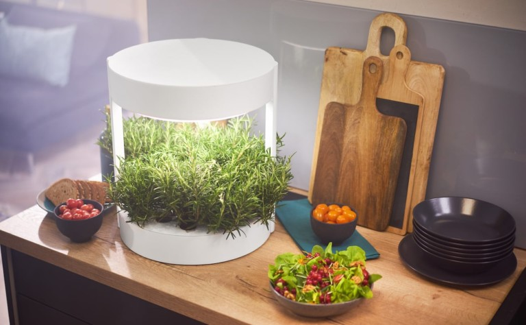 A round cool tech gadgets from Kickstarter indoor garden pod with greens on a kitchen counter.