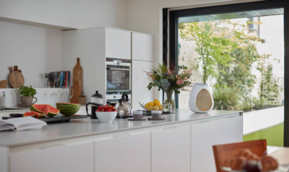A white, egg-shaped wireless speaker on a kitchen counter
