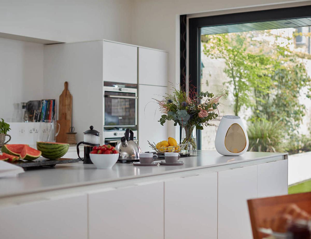 Linn Series 3 Room-Filling Wireless Speaker emits full-bodied sound from a wine-glass shape