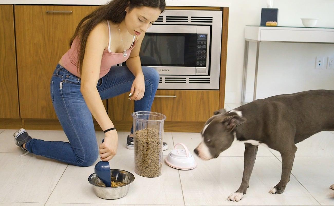 PetFresh Vacuum Sealing Pet Food Storage seals in the freshness
